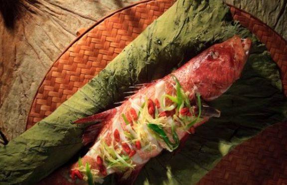 Ikan Kakap Merah Kukus dengan Goji dan Daun Teratai