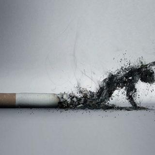 Inilah Yang Terjadi Saat Anda Berhenti Merokok