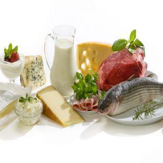 Mengejutkan! Benarkah Protein Kunci Penting Dalam Menurunkan Berat Badan?