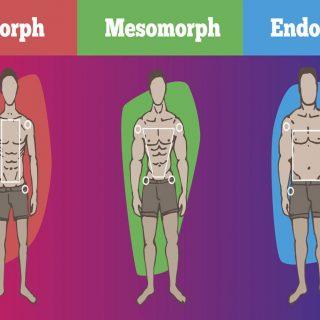 Tipe Bentuk Tubuh Dan Latihan Yang Sesuai Untuk Membangun Otot