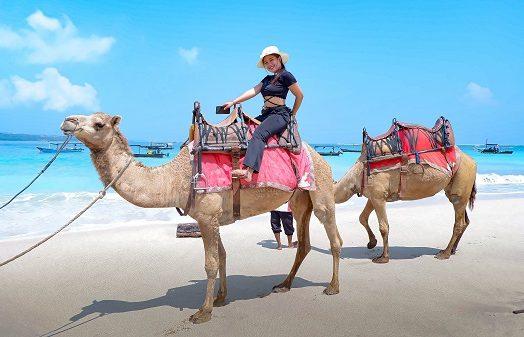 Naik Unta di Bali, Yess Bali Camel Adventure tepatnya!